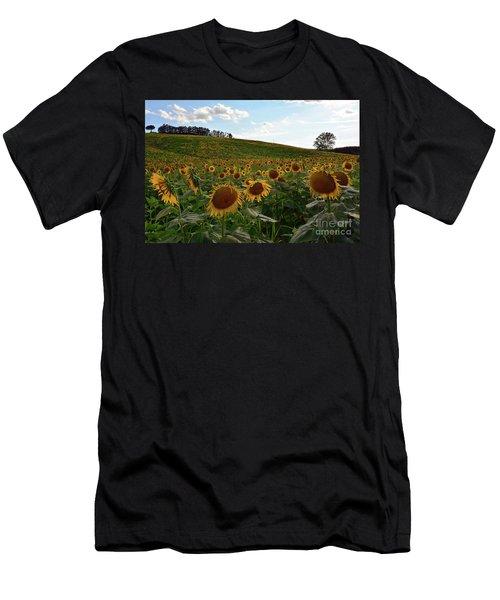 Sunflowers Fields  Men's T-Shirt (Athletic Fit)