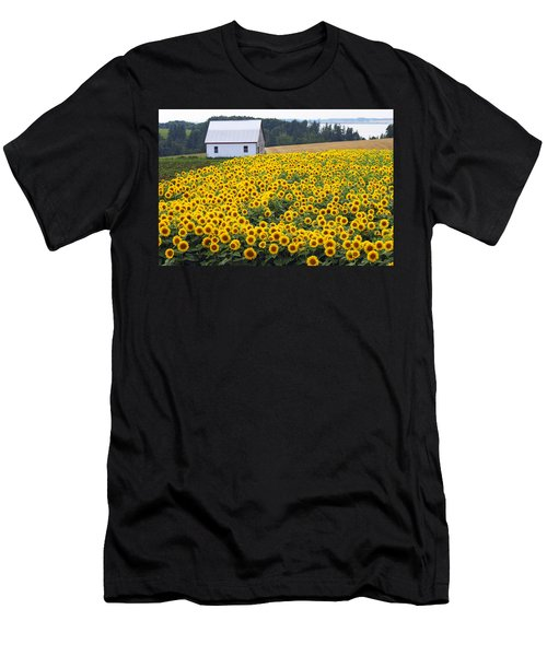 sunflowers in PEI Men's T-Shirt (Athletic Fit)