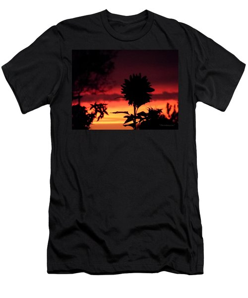 Sunflower's Sunset Men's T-Shirt (Athletic Fit)