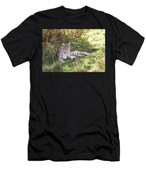 Sunlight Stop  Men's T-Shirt (Athletic Fit)