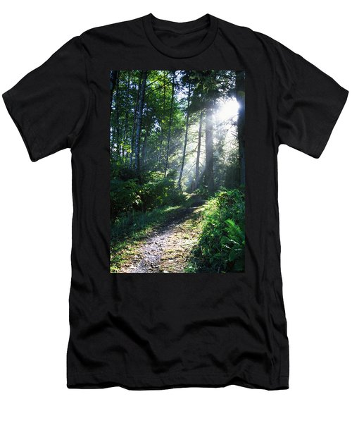 Sunlight Through Trees, Ecola State Men's T-Shirt (Athletic Fit)