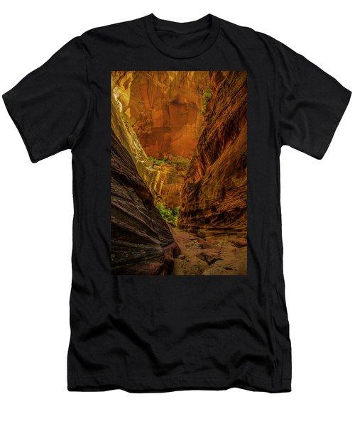 Sunlit Colors In The Slot Men's T-Shirt (Athletic Fit)