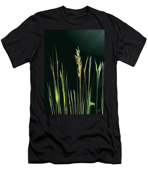 Sunlit Grasses Men's T-Shirt (Athletic Fit)