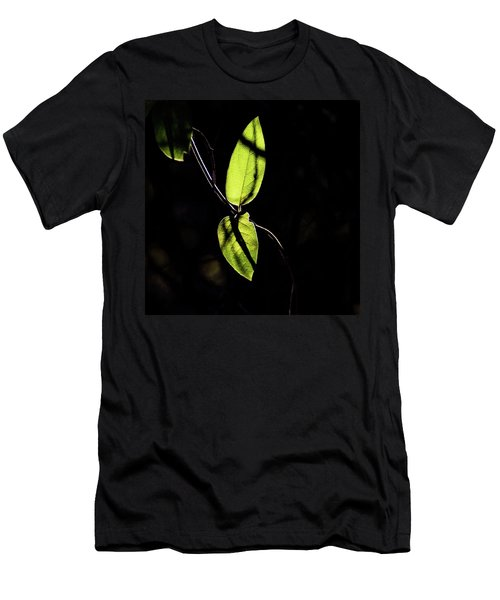 Sunlit Leaves Men's T-Shirt (Athletic Fit)
