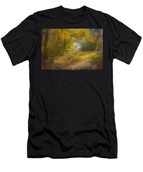 Sunlit Meadow In Borderland Men's T-Shirt (Athletic Fit)