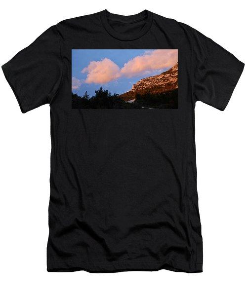 Sunlit Path Men's T-Shirt (Athletic Fit)