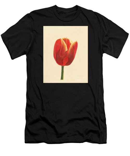 Sunlit Tulip Men's T-Shirt (Athletic Fit)