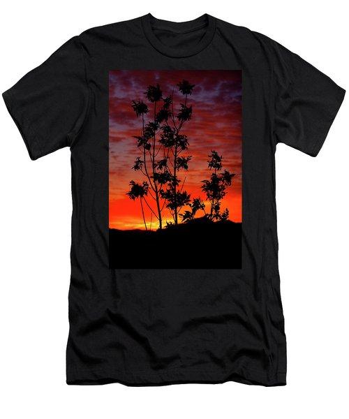 Sunrise Magic Men's T-Shirt (Slim Fit) by Paul Marto
