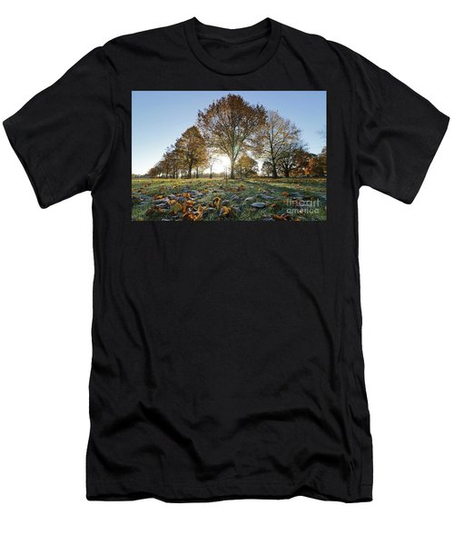 Sunrise Through Lime Trees Men's T-Shirt (Athletic Fit)