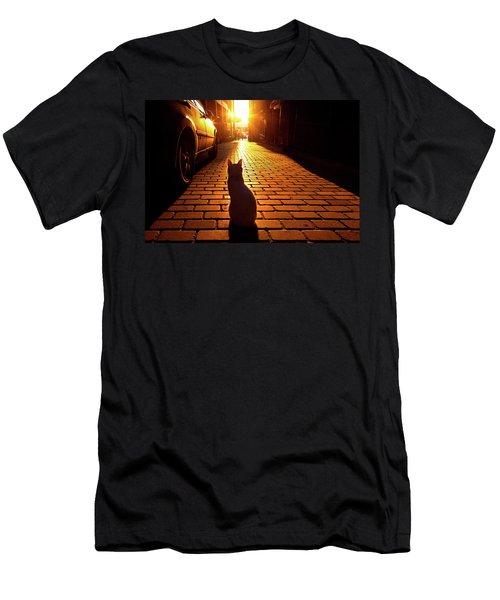 Sunset Cat Men's T-Shirt (Athletic Fit)