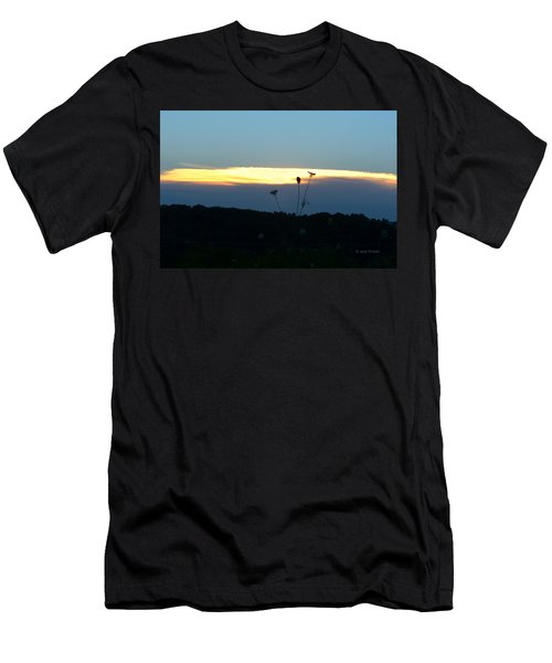 Sunset Gold Stripe Queen Anne Men's T-Shirt (Athletic Fit)