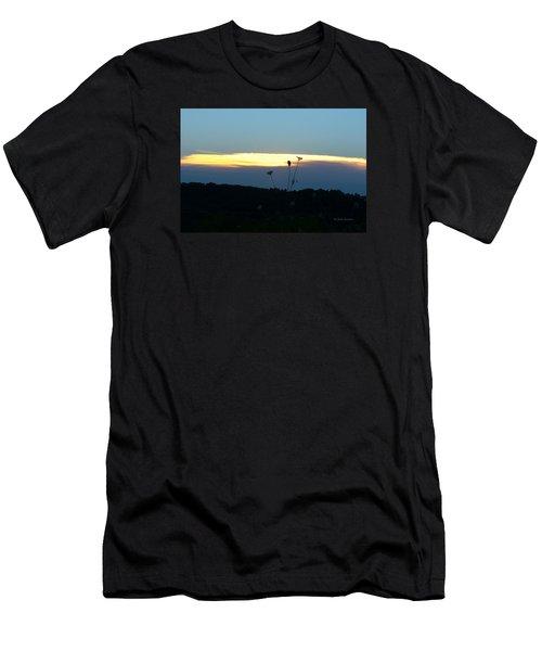 Sunset Gold Stripe Queen Anne Men's T-Shirt (Athletic Fit)