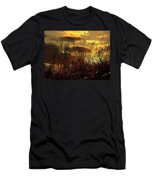 Sunset Grasses Men's T-Shirt (Slim Fit) by Julie Hamilton