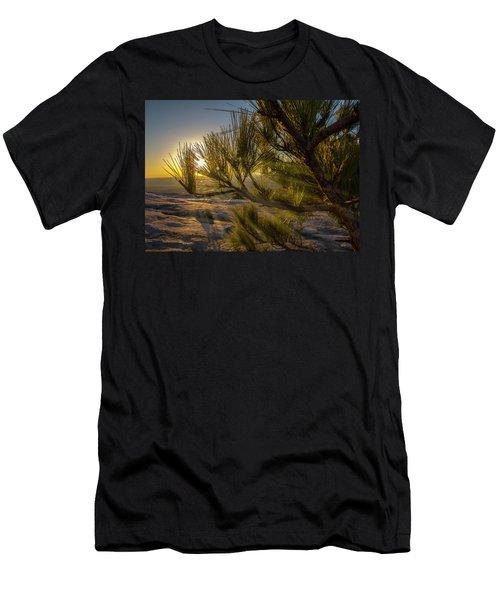 Sunset Pines Men's T-Shirt (Athletic Fit)