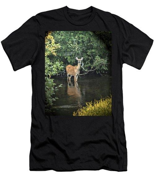 Sunset River Doe Men's T-Shirt (Athletic Fit)