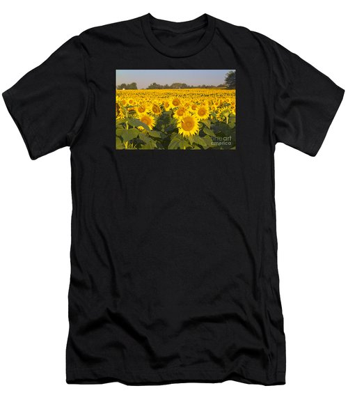 Sunshine Flower Field Men's T-Shirt (Athletic Fit)