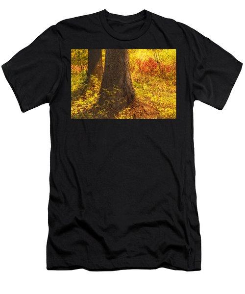 Sunstream Men's T-Shirt (Athletic Fit)
