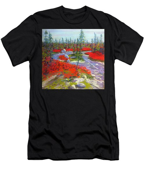 Susie Lake Barrens Men's T-Shirt (Athletic Fit)