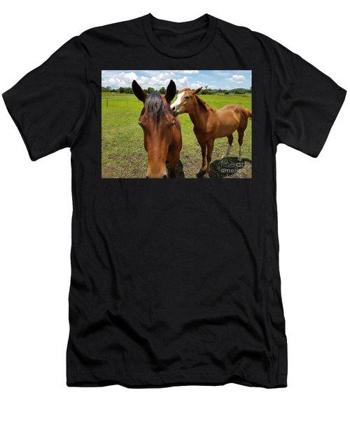Sweet Horses  Men's T-Shirt (Athletic Fit)