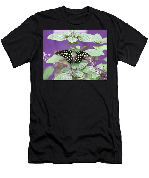 Tailed Jay Butterfly In Puple Men's T-Shirt (Athletic Fit)