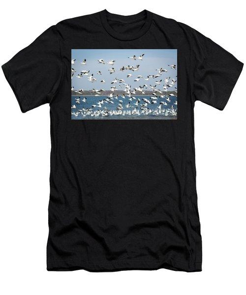 Taking Flight IIi Men's T-Shirt (Athletic Fit)