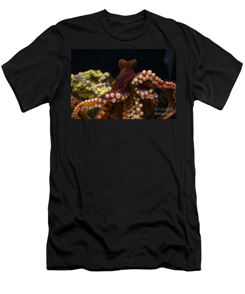 Tako Not Taco Hawaiian Octopus Men's T-Shirt (Athletic Fit)