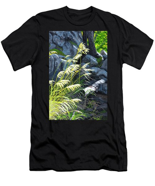 Tall Grass In A Breeze Men's T-Shirt (Athletic Fit)