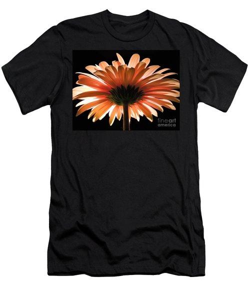 Tangerine Gerber Daisy Men's T-Shirt (Athletic Fit)