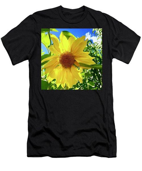 Tangled Sunflower Men's T-Shirt (Athletic Fit)