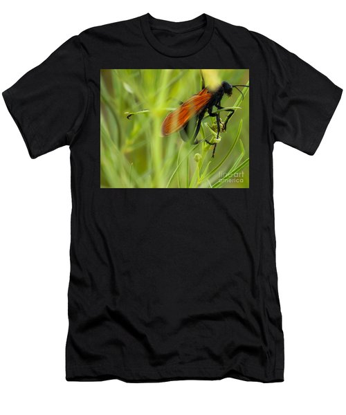 Tarantula Hawk 1 Men's T-Shirt (Athletic Fit)