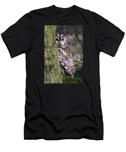 Tawny Owl In A Woodland Men's T-Shirt (Athletic Fit)