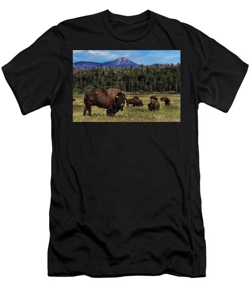 Tending The Herd Men's T-Shirt (Athletic Fit)