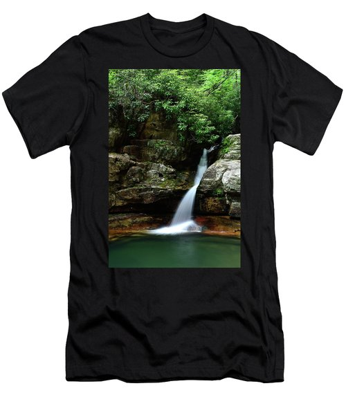 Tennessee's Blue Hole Falls Men's T-Shirt (Athletic Fit)
