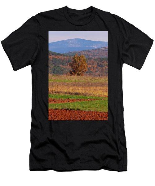 Terra Istria Men's T-Shirt (Athletic Fit)