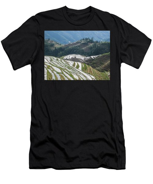 Terrace Fields Scenery In Spring Men's T-Shirt (Athletic Fit)