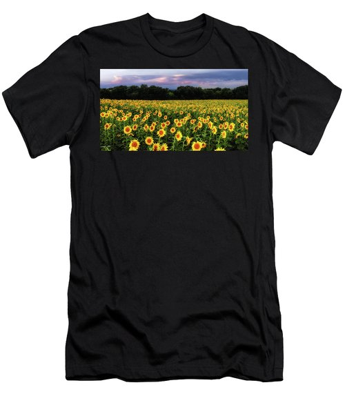Texas Sunflowers Men's T-Shirt (Athletic Fit)