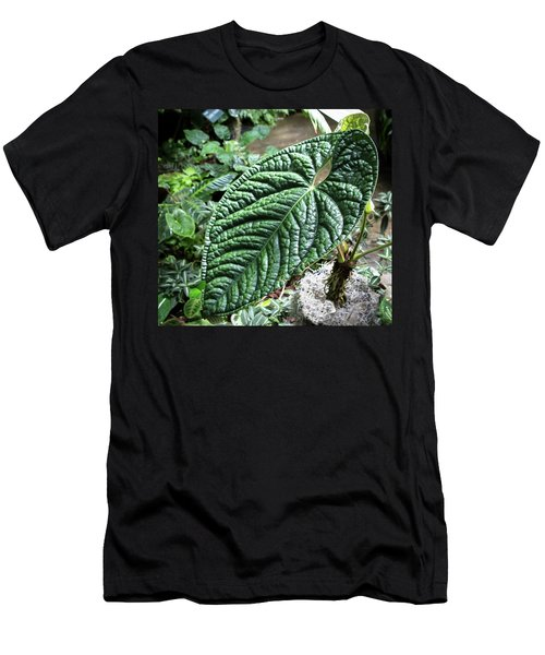 Texture Of A Leaf Men's T-Shirt (Athletic Fit)
