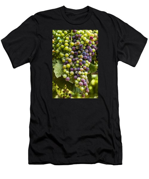 The Art Of Wine Grapes Men's T-Shirt (Athletic Fit)