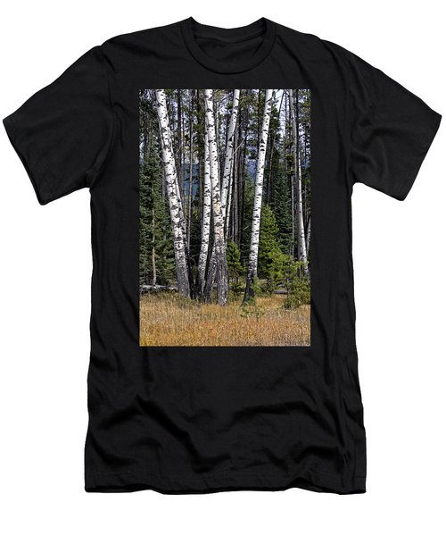 The Aspens Men's T-Shirt (Athletic Fit)