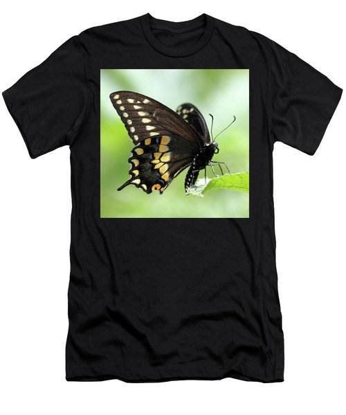 The Beautiful Black Swallowtail Men's T-Shirt (Athletic Fit)