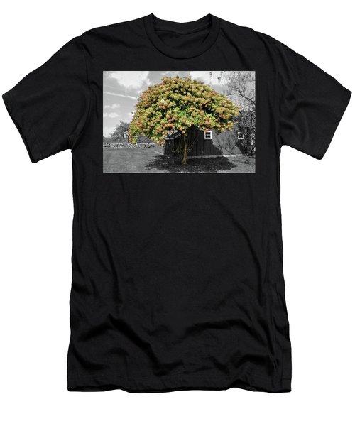 The Big Hydrangea Tree Men's T-Shirt (Athletic Fit)