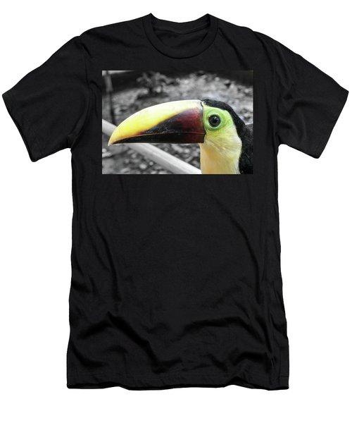 The Big Toucan Men's T-Shirt (Athletic Fit)