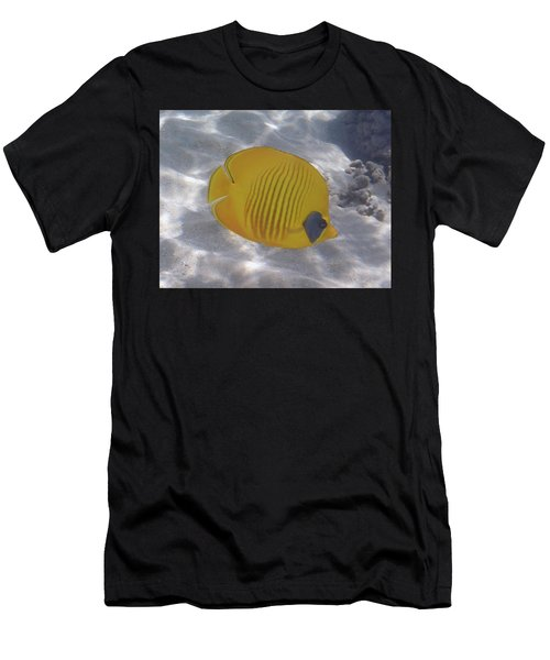 The Bluecheeked Butterflyfish Red Sea Men's T-Shirt (Athletic Fit)