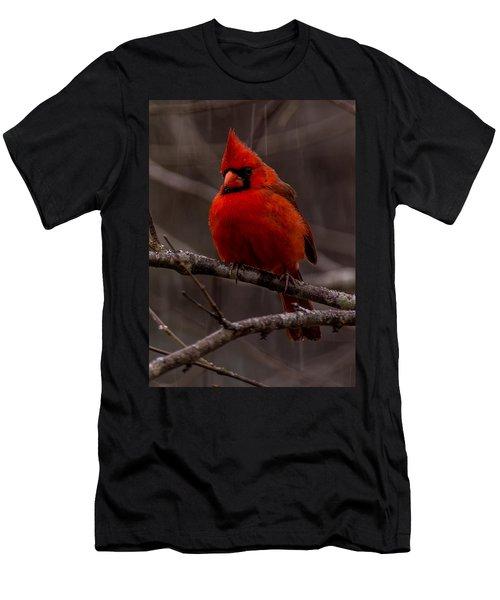 The Crimson Suit Men's T-Shirt (Athletic Fit)