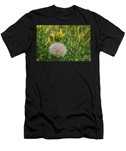 The Dandelion  Men's T-Shirt (Athletic Fit)