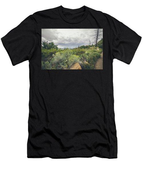 The Desert Comes Alive Men's T-Shirt (Athletic Fit)