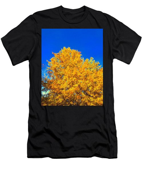 The Flare Of Fall On A Clear Day Men's T-Shirt (Athletic Fit)