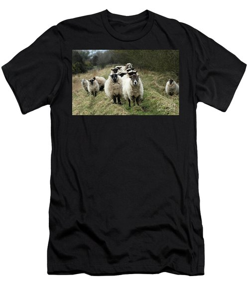The Flock 2 Men's T-Shirt (Athletic Fit)