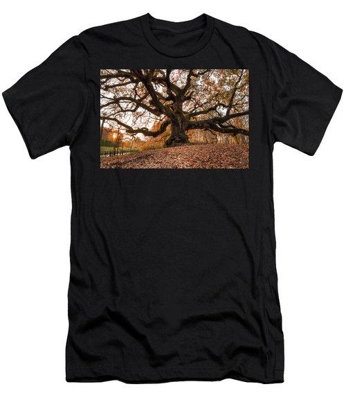 The Great Oak Men's T-Shirt (Athletic Fit)