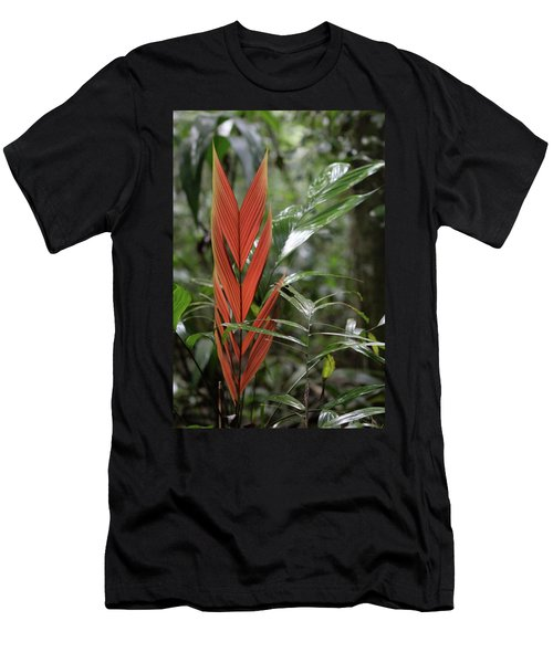The Heart Of The Amazon Men's T-Shirt (Athletic Fit)